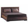 Water Hyacynth Bed Dark Color
